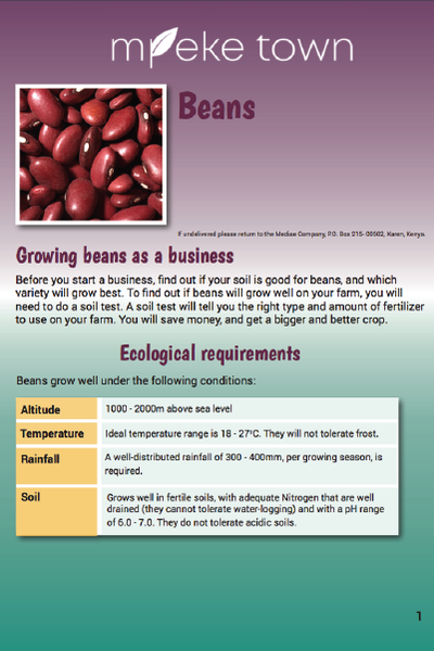 Mpeke Town cover image_Beans