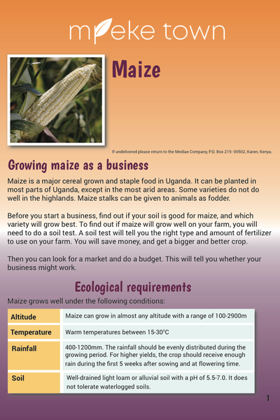 Mpeke Town cover image_Maize